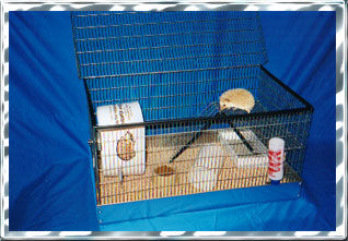 Custom Built Hedgehog Wire Cage - HEDGEHOGS by Vickie